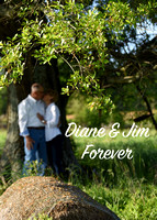COUPLE Diane and Jim 21-Apr-17